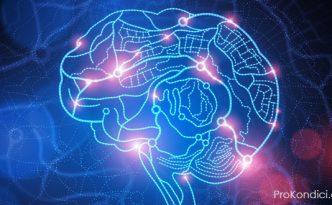 darky-pro-mozek