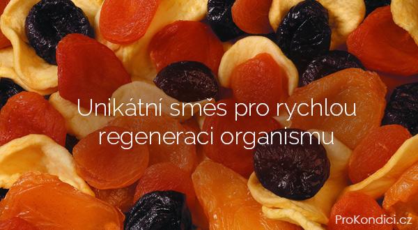 smes-regenerace