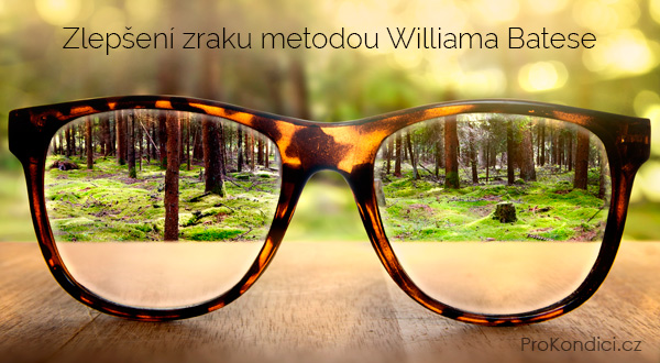 A látás természetes javulása a Bates-módszer szerint - Milyen gyógyszerekkel javíthatja a látást